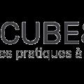 Logo 1Cube&Go